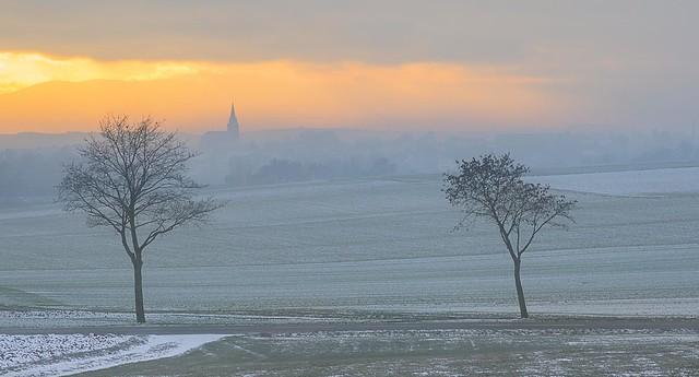 Les couleurs de l'hiver - The colours of winter