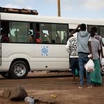 IOM Djibouti - IOM bus