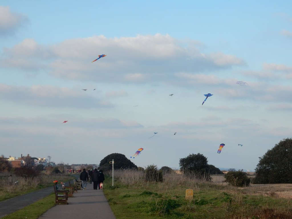 Kites, Walmer Beach Dover to Deal
