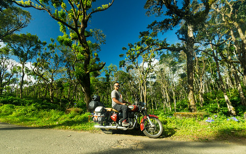 Through the rainforests of Kerala | by Trekpedition.Com