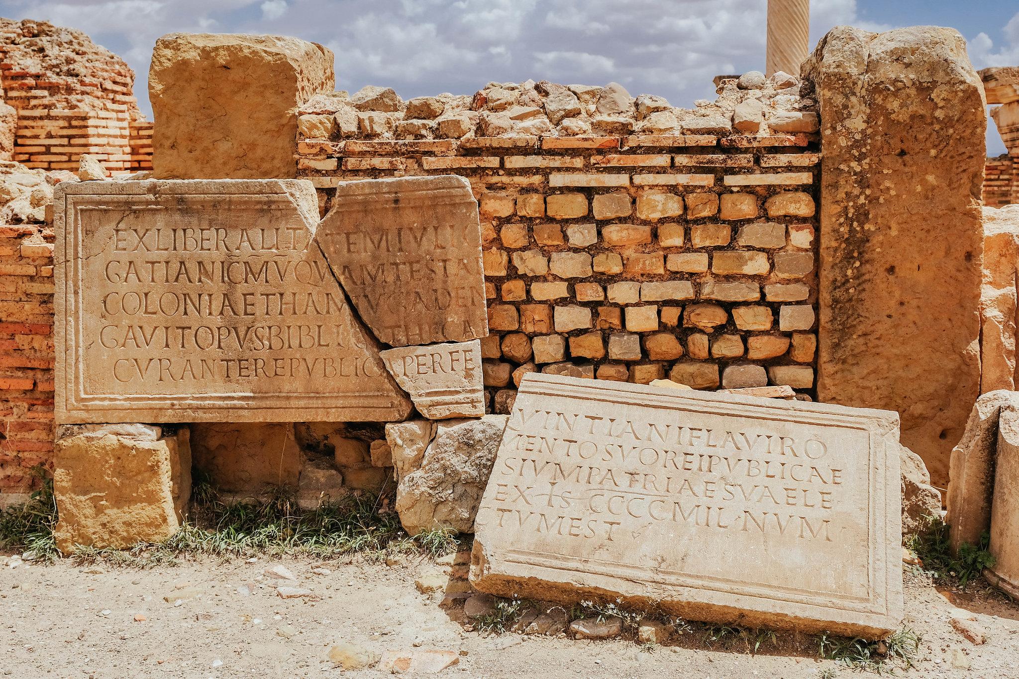Timgad library