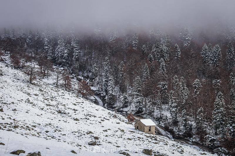 Bòsc de Conangles y el río que baja del valle