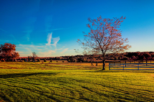 pastureland grass landscape baltimore county maryland morning