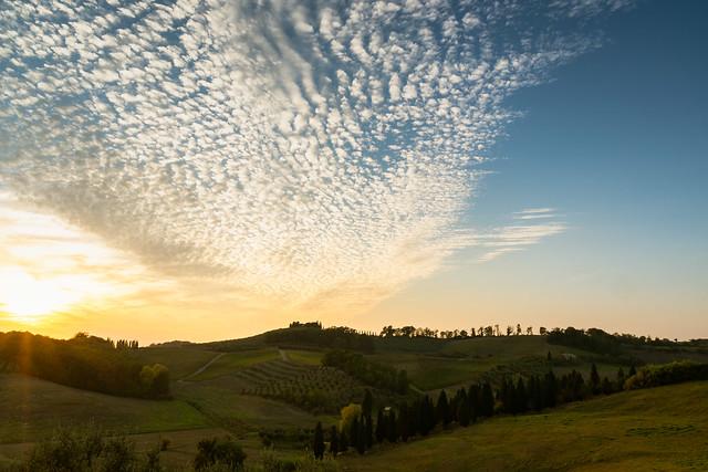 2018-10 CERRETO GUIDI, TUSCANY, ITALY.