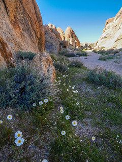 Alabama Hills | by snackronym