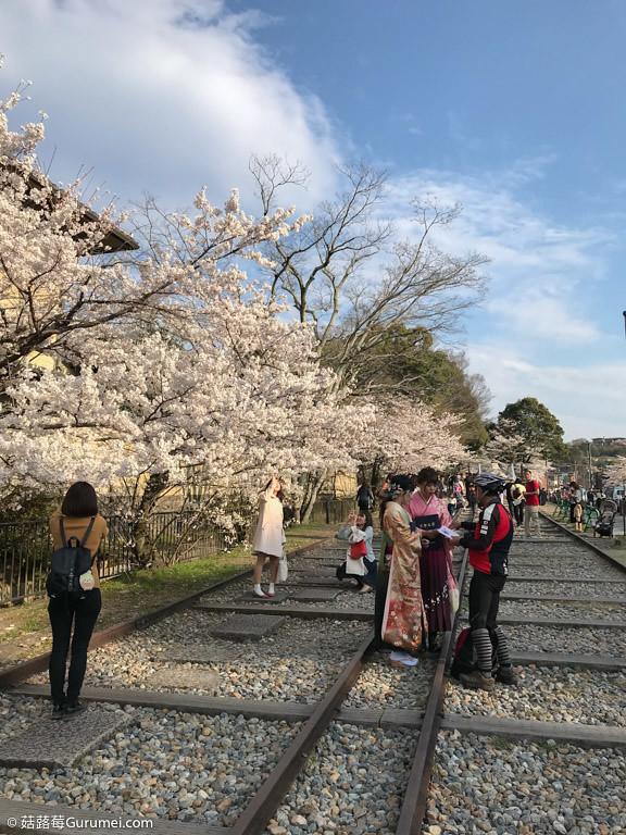 打工度假-京都生活-賞花、野餐-065