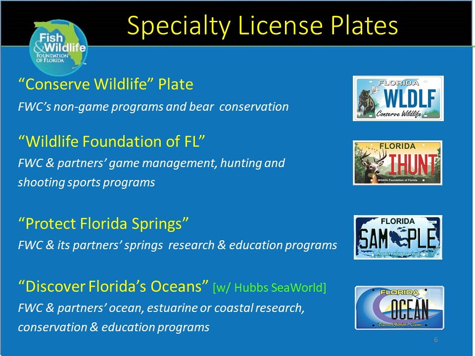 Foundation License Plates | FWC Graphic | Florida Fish and Wildlife