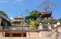 Linda Vista Gardens