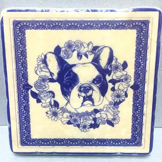 #henribanks #marbletiles #italianmarble #dog