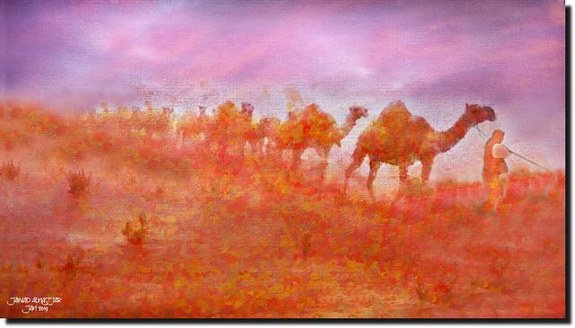Camels Caravan-III