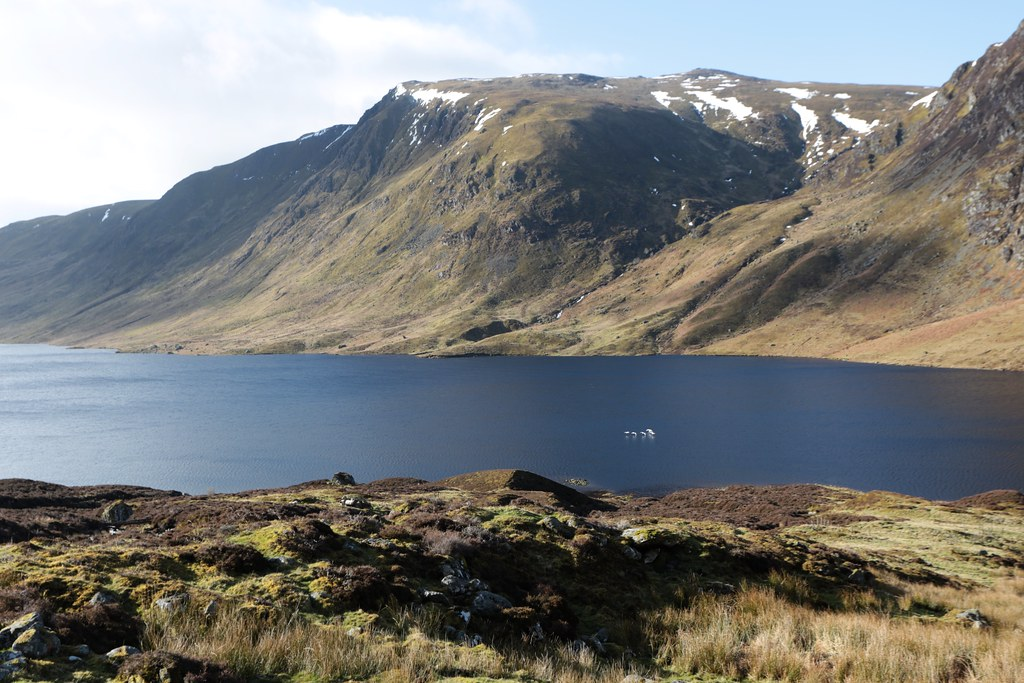 Swans over Loch Turret Reservoir