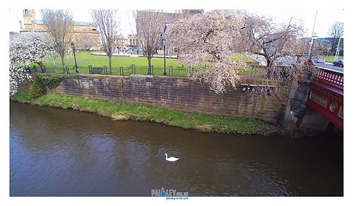The River Cart with Swan meandering down the river. Thanks To Paisley Buddie https://psly.scot/2TIxOlU #paisley #scotland #history #renfrewshire #scotland #positivepaisley #drone #4k | by paisleyorguk