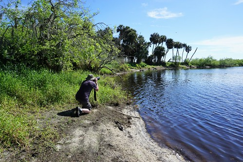 Myakka River State Park's Wilderness Preserve - Hike to Deep Hole, March 3, 2019 | by JenniferHuber