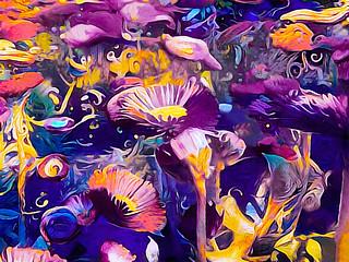 Color Garden | by Susan Maxwell Schmidt
