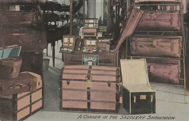 Saddlery Showroom at Harrold, Colton & Co, Adelaide, S.A. - circa 1910