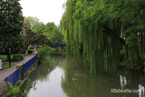 牛津Oxford-39   by Littlebeartw6709