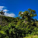Countryside near Yaguajay, Sancti Spiritus, Cuba, 2019