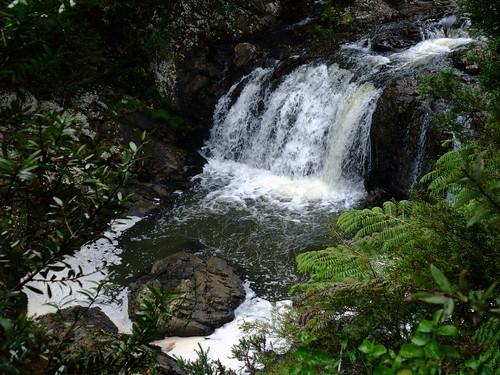 highest waterfall northland 46metes tahekefalls tahekereserve tahekeriver