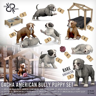 New Gacha Set American Bully Puppies | by REZZ ROOM