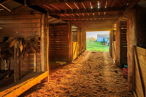 barn dirt farm grass nsw newsouthwales saddles sunrise timber sun