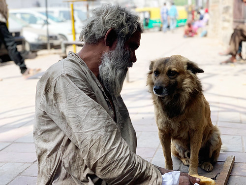 City Moment - Two Houseless Friends, Turkman Gate | by Mayank Austen Soofi