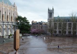 University of Washington | by Pdrumphotography
