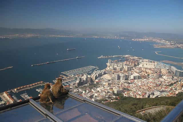 Enjoying the view, Upper Rock, Gibraltar