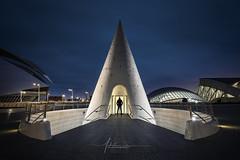 Cité des arts et des sciences Valancia Espagne