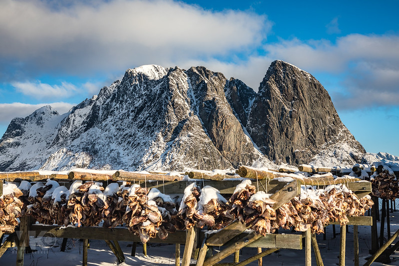 20190303-Land of Light Photography Workshop, Lofoten-017.jpg