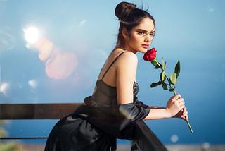 Rosa | by javier_jayma