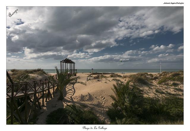 Playa de La Gallega