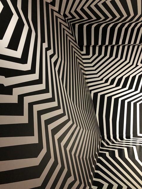 Deconstructed zebra