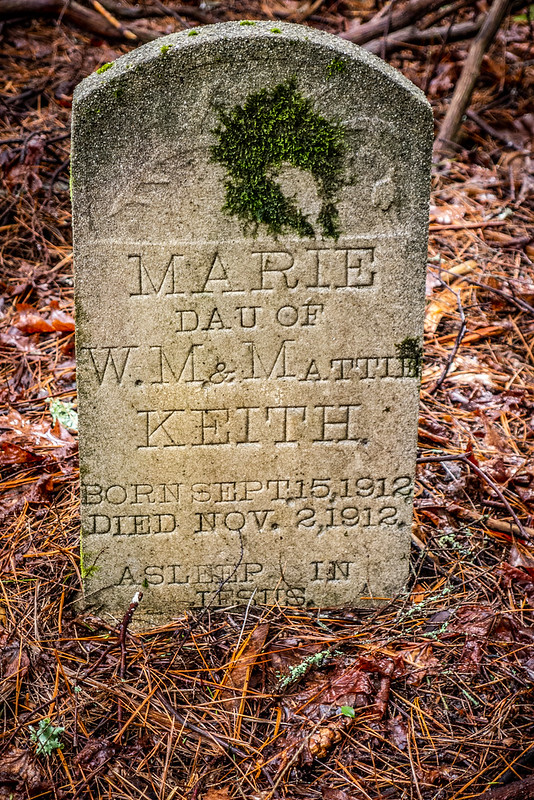 Tall Pines Preserve and South Saluda Church Cemetery-46