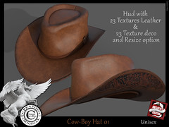 cow-boy hat