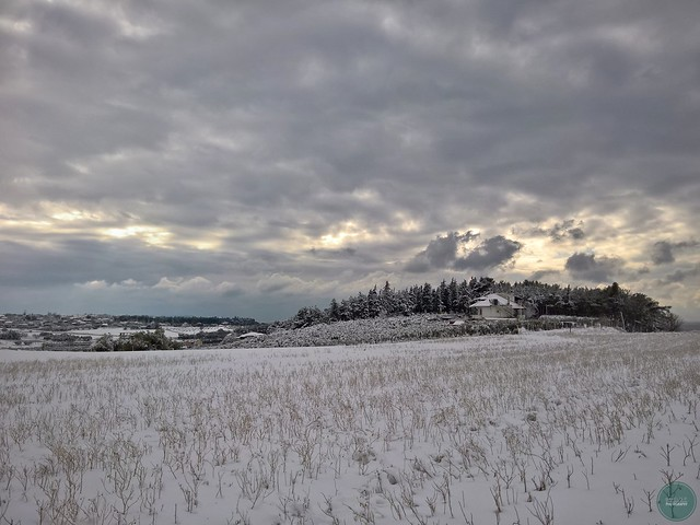 Snowy field and dramatic sky.