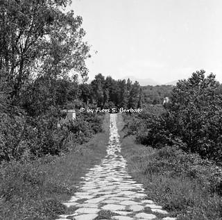 Sessa Aurunca (CE), 1970, Il Ponte Aurunco e la Via Fistula.