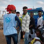 IOM Djibouti - Roda