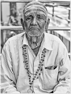 """""""Old age and the passage of time teach all things."""" _ Sophocles 