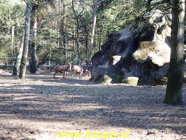 2019-02-27 Austerlitz 14 Km   (52)
