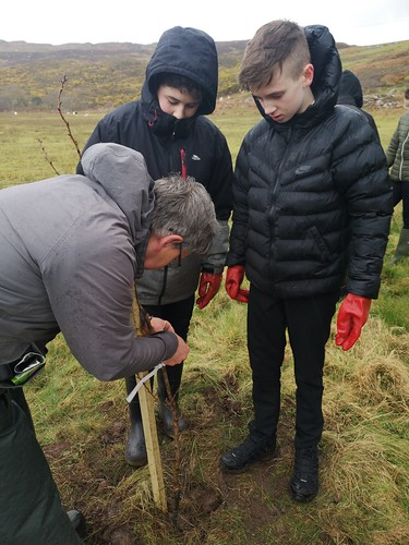Pocket Orchards   by Gairloch High