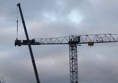 Waterside crane