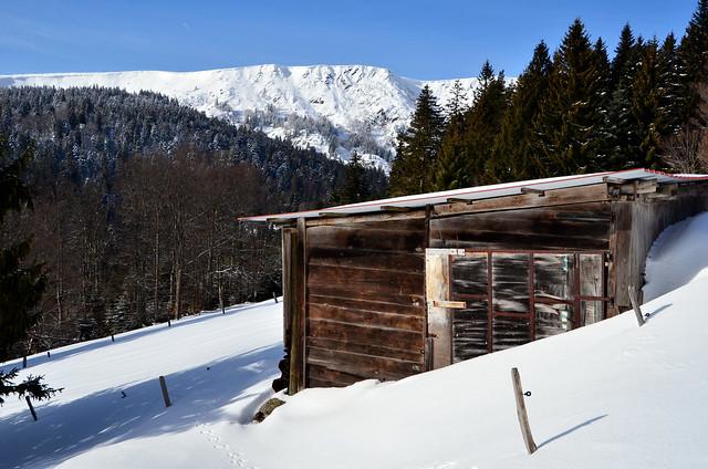 La cabane  -  The cabin
