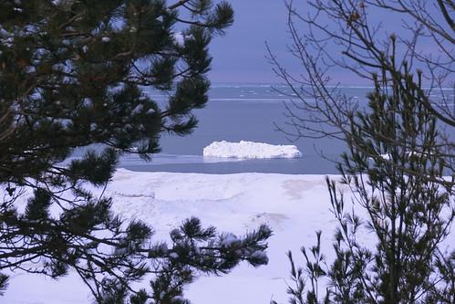 winter trees framed ice iceberg lake lakeshore lakemichigan clouds