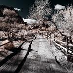 0246937642172-108-19-03-Desert Ranch in Infrared-5-HDR