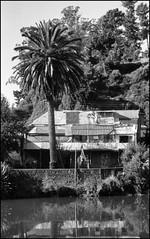 TOMÉ - Casa al lado del Estero Bellavista.