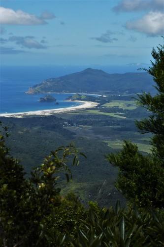 newzealand greatbarrierisland