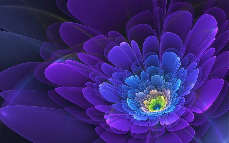 Обои фиолетовый, цветок, фрактал картинки на рабочий стол, фото скачать бесплатно