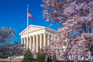 SCOTUS Surrounded by Blossoms | by John Brighenti