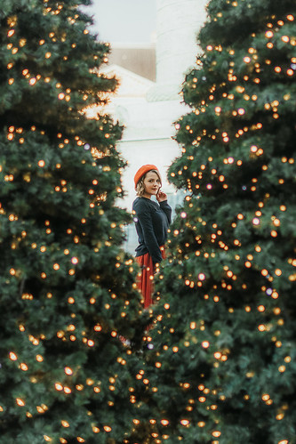 Noël à Paris   by TheLittlePaws