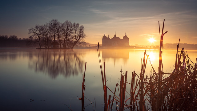 Good morning Moritzburg